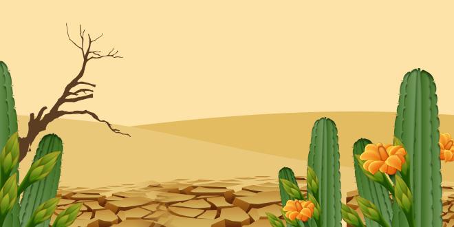 cemaden - secas e impactos